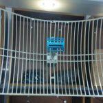 Signal Improving Antenna (WiMAX) – انتينة تقوية